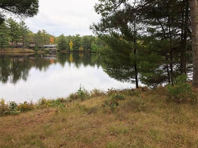 558 Blass Lake Dr, Lake Delton, WI 53965 (#1870618) :: HomeTeam4u