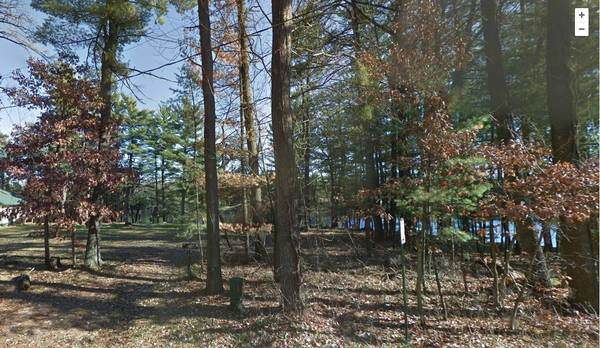 0 Blass Lake Dr, Lake Delton, WI 53965 (#1873114) :: HomeTeam4u