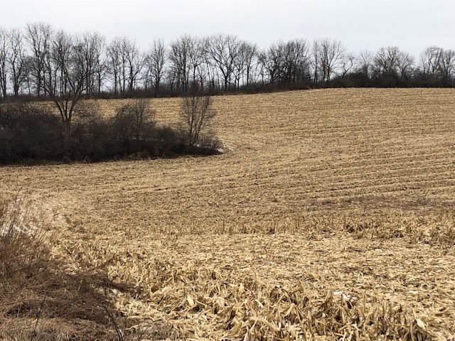 80 Acres Coray Ln, Cross Plains, WI 53593 (#1874613) :: HomeTeam4u
