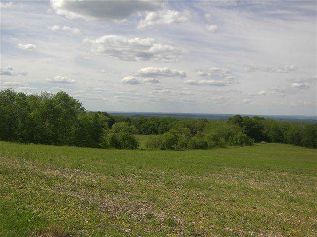 38.75 Ac County Road F, Blue Mounds, WI 53517 (#1874919) :: Nicole Charles & Associates, Inc.