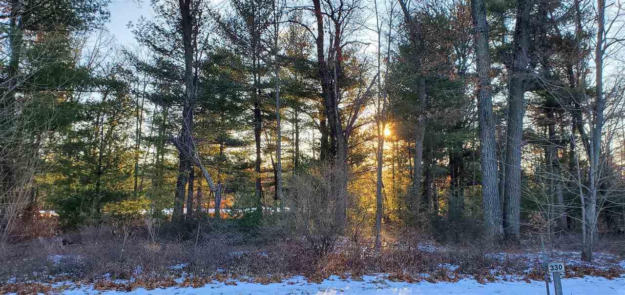 330 Pine Meadow Ct - Photo 1