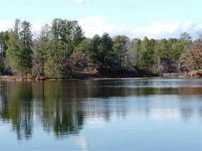 W4116 Murmuring Pines Dr, Necedah, WI 54646 (#1883336) :: Nicole Charles & Associates, Inc.