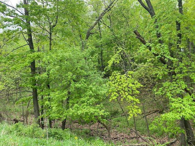 Bunker Rd, Lake Delton, WI 53940 (#1883526) :: Nicole Charles & Associates, Inc.