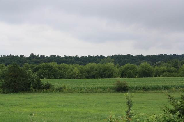 113.28 Ac King Rd, Willow Springs, WI 53565 (#1888403) :: Nicole Charles & Associates, Inc.