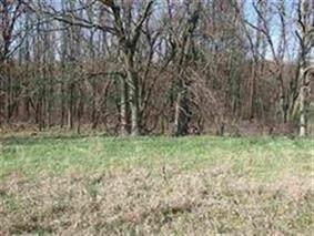 Lot 40 Peacock Ln, Mecan, WI 53949 (#1891560) :: HomeTeam4u