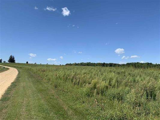Lot 1 Roger Rd, Blue Mounds, WI 53572 (#1892855) :: Nicole Charles & Associates, Inc.