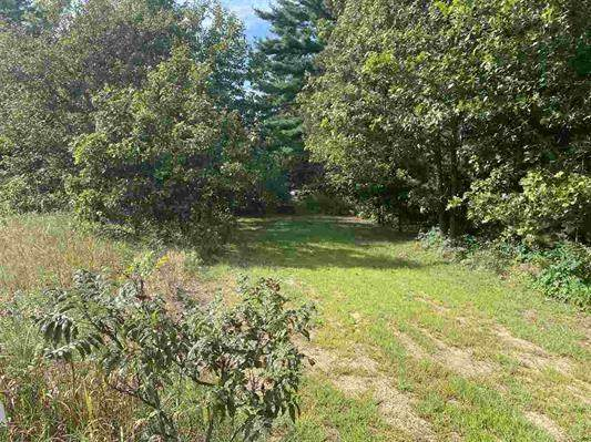 1.52 acres Logan Rd, Buena Vista, WI 53556 (#1893875) :: Nicole Charles & Associates, Inc.