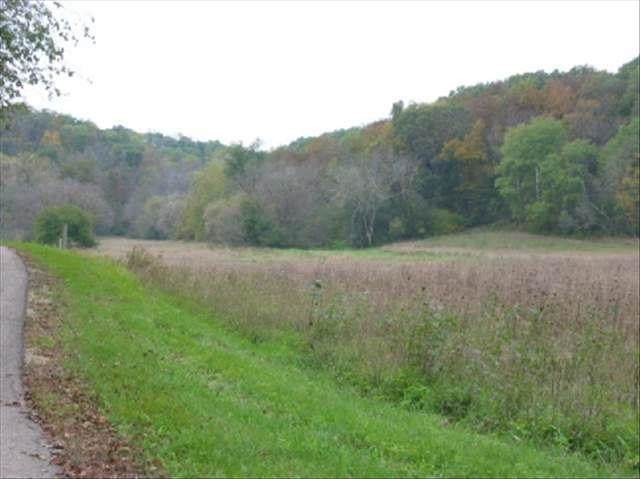 39.16 Ac John Wilkinson Rd, Black Earth, WI 53560 (#1896419) :: Nicole Charles & Associates, Inc.