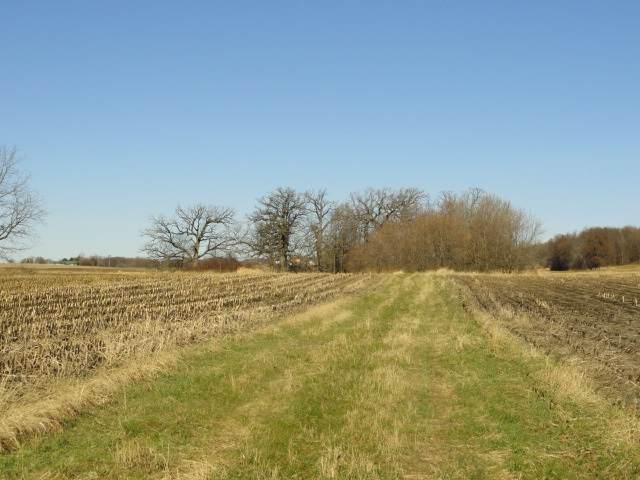 10 Acres County Road Cw, Emmet, WI 53098 (#1898307) :: Nicole Charles & Associates, Inc.