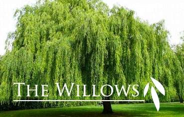 9924 Shining Willow St, Madison, WI 53562 (#1902241) :: HomeTeam4u