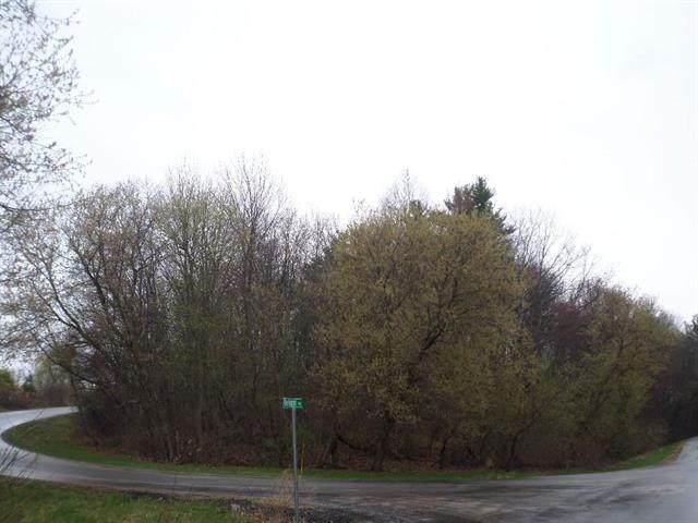 Lot 18 Delrae Ave, La Grange, WI 54660 (#1904715) :: HomeTeam4u