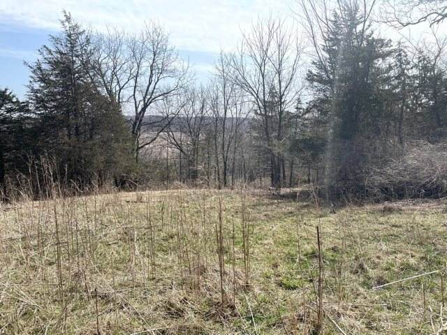 Lot 2 Stone Valley (Csm15662), Berry, WI 53528 (#1905310) :: RE/MAX Shine