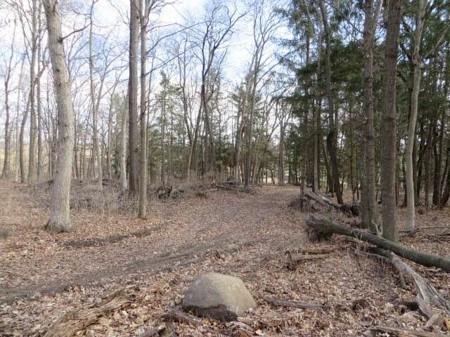 4.5 +/- Acres County Road Gg, Manchester, WI 53923 (#1905744) :: HomeTeam4u