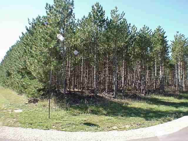 Lot 32 Mays Point Rd, Germantown, WI 54646 (#1906827) :: Nicole Charles & Associates, Inc.