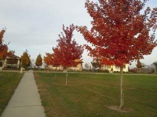 2124 Fieldstone Blvd, Prairie Du Sac, WI 53578 (#1907285) :: RE/MAX Shine