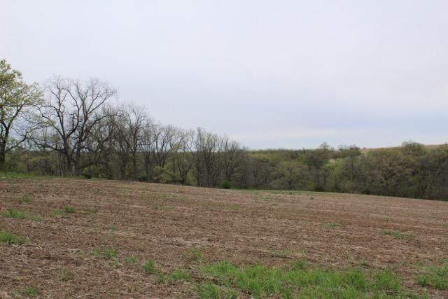 27.5 AC Oak Tree Ct, Mount Horeb, WI 53572 (#1908541) :: Nicole Charles & Associates, Inc.
