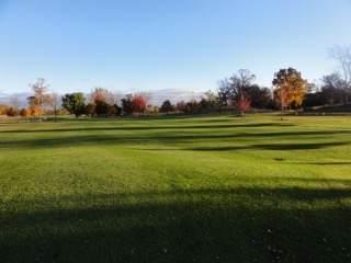 4226 Vilas Rd (60 Acres), Cottage Grove, WI 53527 (#1911690) :: RE/MAX Shine