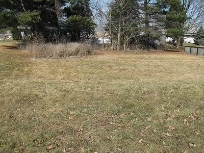 Lt2 W Pine St, Lake Mills, WI 53551 (#368066) :: Nicole Charles & Associates, Inc.