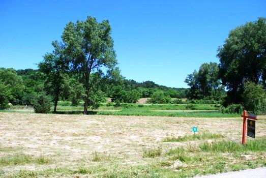 L11 Blue Heron Ponds, Wyocena, WI 53954 (#1776090) :: HomeTeam4u