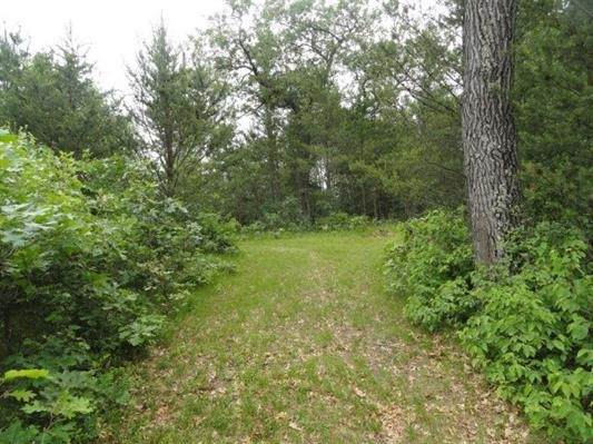 L26 S Timber Bay Ave, Quincy, WI 53934 (#1903146) :: HomeTeam4u
