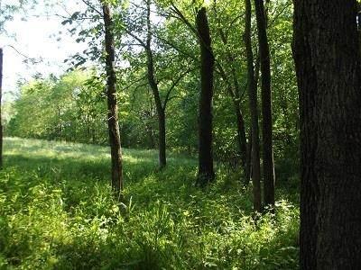 L58 Deep Woods Ln, Bloomington, WI 53801 (#1910507) :: RE/MAX Shine
