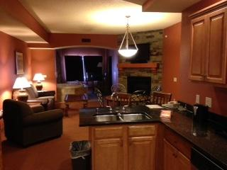 2411 River Rd, Wisconsin Dells, WI 53965 (#1775093) :: Nicole Charles & Associates, Inc.