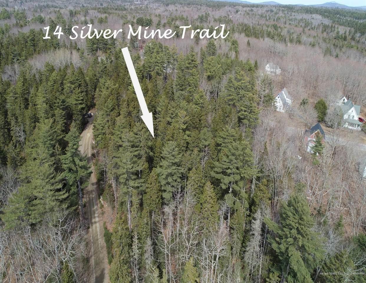 14 Silver Mine Trail - Photo 1