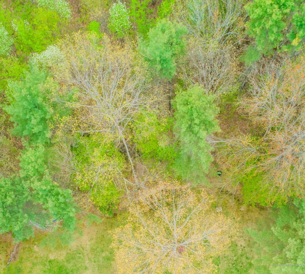 0 Whispering Pines Lane - Photo 1