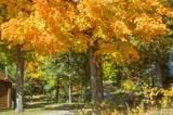1 Bowlin Pond Road - Photo 72