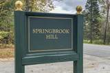 47 Springbrook Hill Drive - Photo 25