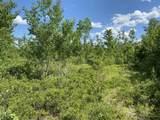 M3 L16 Mountain View Road - Photo 4