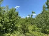M3 L16 Mountain View Road - Photo 5