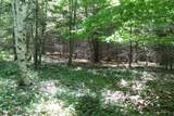 TBD Orcutt Mountain Road - Photo 12