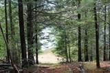 M2 L9 &10 Diffin Hill Road - Photo 47