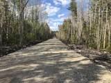 8 Black Bear Trail - Photo 10