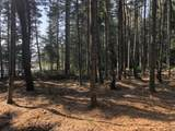 8 Black Bear Trail - Photo 12