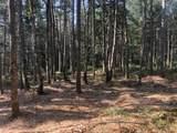 8 Black Bear Trail - Photo 13