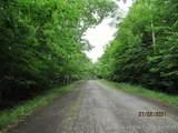 0 Mutton Hill Road - Photo 4