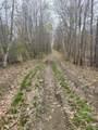0 Little Wilson Pond Road - Photo 1