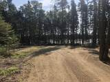 8 Black Bear Trail - Photo 4