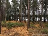 8 Black Bear Trail - Photo 6