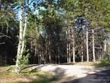 0 White Deer Circle - Photo 6