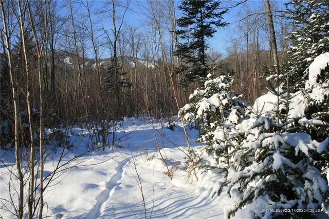 Lot 35 King Pine Drive, Newry, ME 04261 (MLS #1115816) :: Your Real Estate Team at Keller Williams