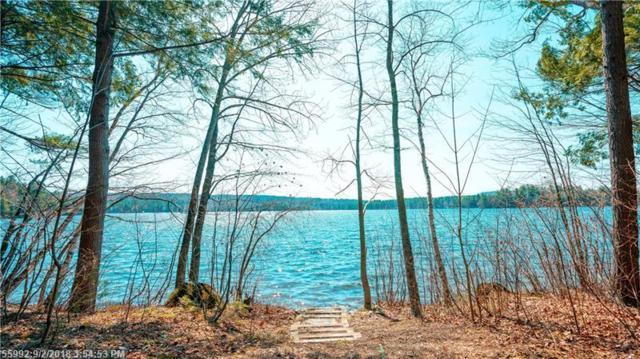 85 Spring Valley Rd, Raymond, ME 04071 (MLS #1343519) :: Herg Group Maine