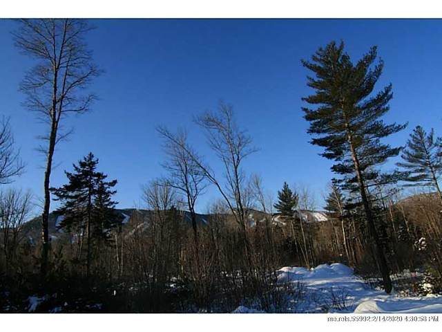 Lot 41 King Pine Drive, Newry, ME 04261 (MLS #1115810) :: Your Real Estate Team at Keller Williams