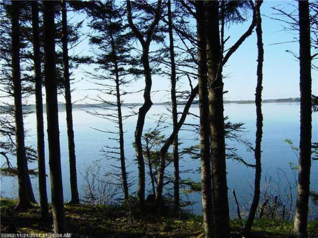 1031 North Lubec Road, Lubec, ME 04652 (MLS #1127328) :: Acadia Realty Group