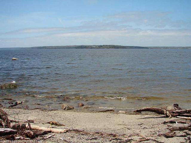 1361 Castine Road, Penobscot, ME 04476 (MLS #1136329) :: Acadia Realty Group