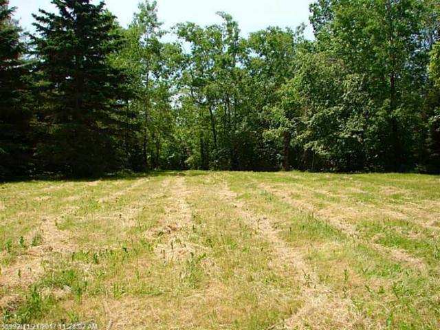 0 Race Course Road, Bucksport, ME 04416 (MLS #1138606) :: Acadia Realty Group