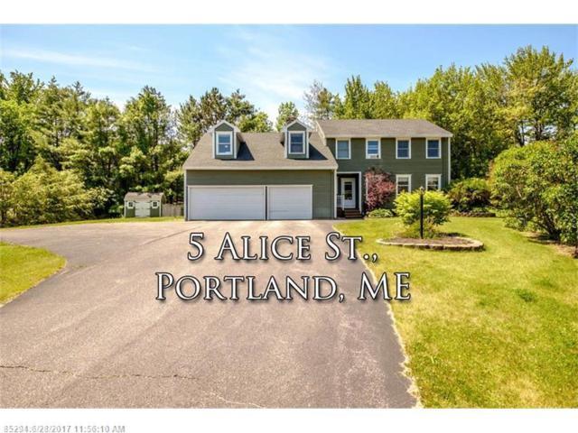 5 Alice St, Portland, ME 04103 (MLS #1314856) :: Keller Williams Coastal Realty