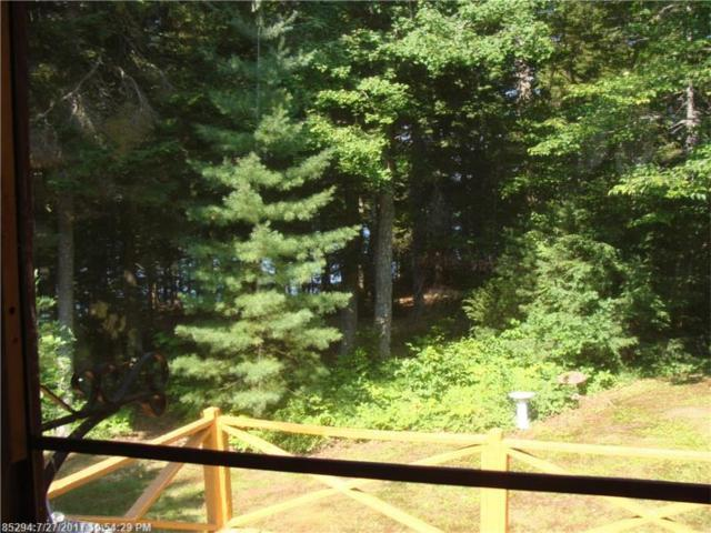 0 Lyons Den Rd, Northfield, ME 04654 (MLS #1319417) :: Acadia Realty Group